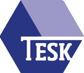 Tesk Logo